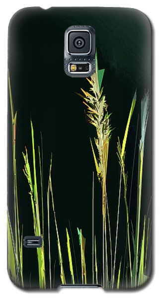 Sunlit Grasses Galaxy S5 Case