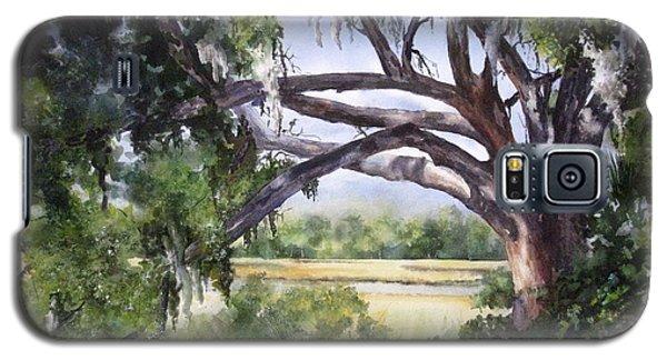 Sunlit Marsh Galaxy S5 Case