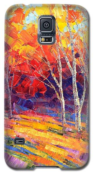 Sunlit Shadows Galaxy S5 Case