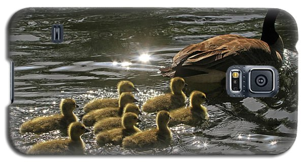 Galaxy S5 Case featuring the photograph Sunlit Stroll by Donna Kennedy