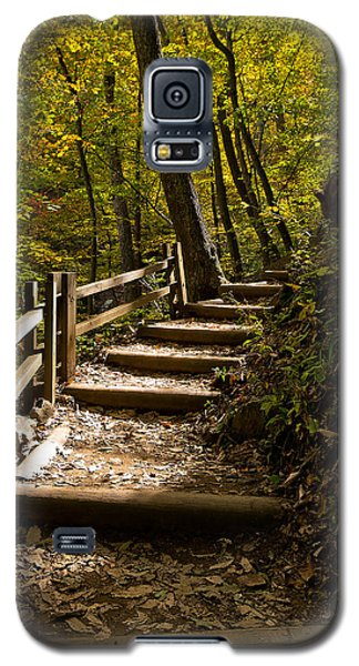 Sunlit Trail Galaxy S5 Case