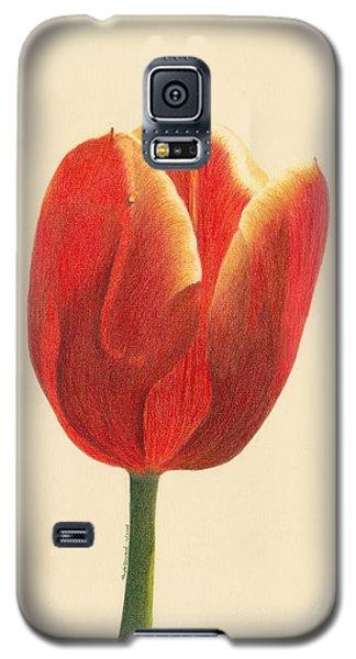 Sunlit Tulip Galaxy S5 Case