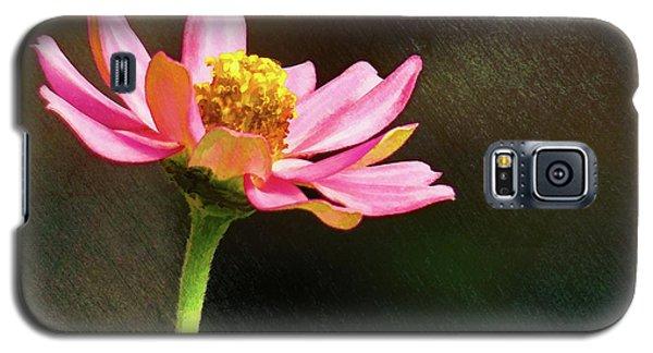 Sunlit Uplifting Beauty Galaxy S5 Case