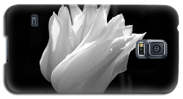 Sunlit White Tulips Galaxy S5 Case by Rona Black