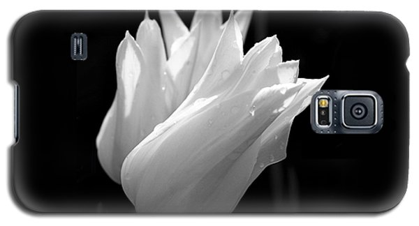 Sunlit White Tulips Galaxy S5 Case