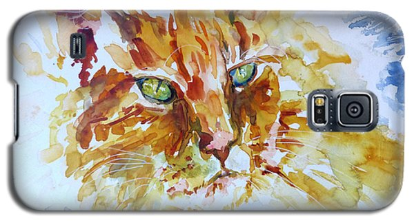 Galaxy S5 Case featuring the painting Sunlite by P Maure Bausch