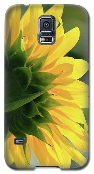 Sunlite Sunflower Galaxy S5 Case
