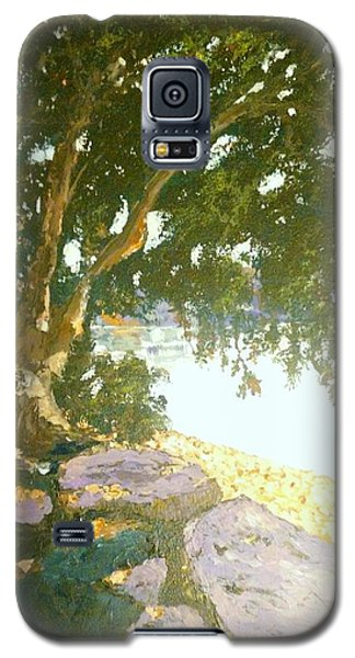 Sunny Day By An Old Tree Galaxy S5 Case