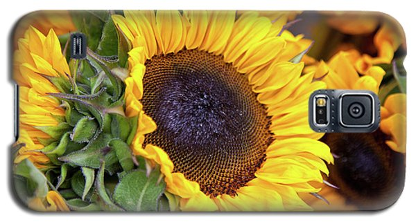 Galaxy S5 Case featuring the photograph Sunny Face by Susan Cole Kelly