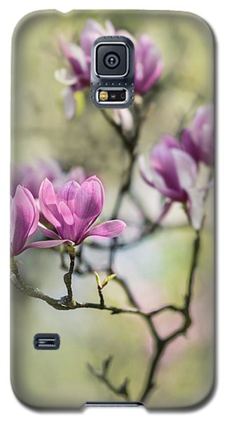 Sunny Impression With Pink Magnolias Galaxy S5 Case