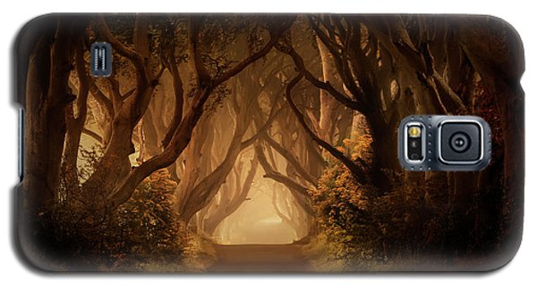 Sunny Morning In Dark Hedges Galaxy S5 Case