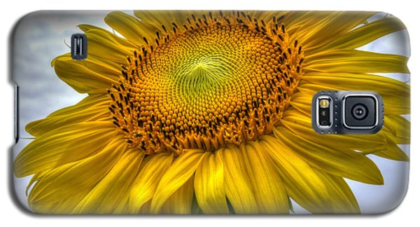 Sunny Side Up Galaxy S5 Case