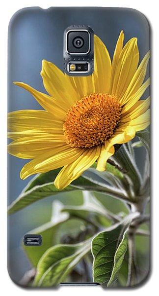 Galaxy S5 Case featuring the photograph Sunny Side Up  by Saija Lehtonen