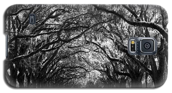 Sunny Southern Day - Black And White Galaxy S5 Case