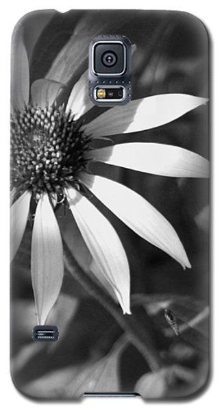 Galaxy S5 Case featuring the photograph Sunrays by David Dunham
