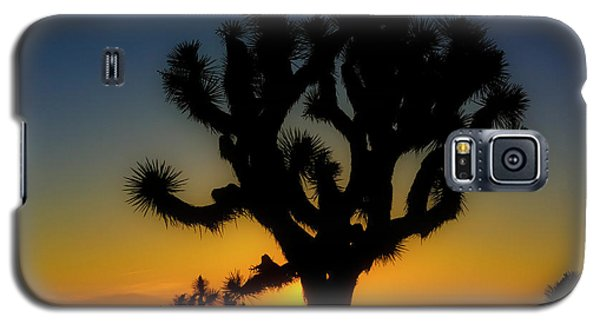 Sunrise At Joshua Galaxy S5 Case