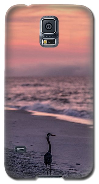 Galaxy S5 Case featuring the photograph Sunrise Beach And Bird by John McGraw