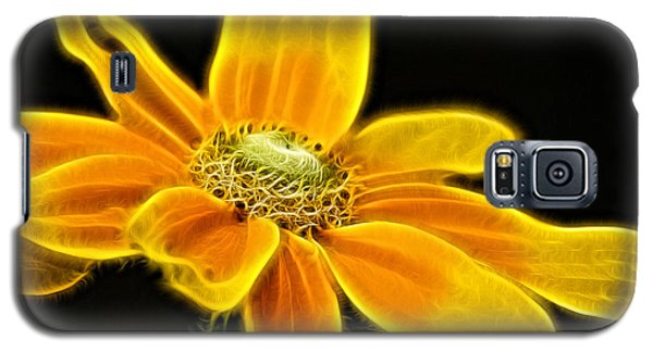 Galaxy S5 Case featuring the photograph Sunrise Daisy by Cameron Wood