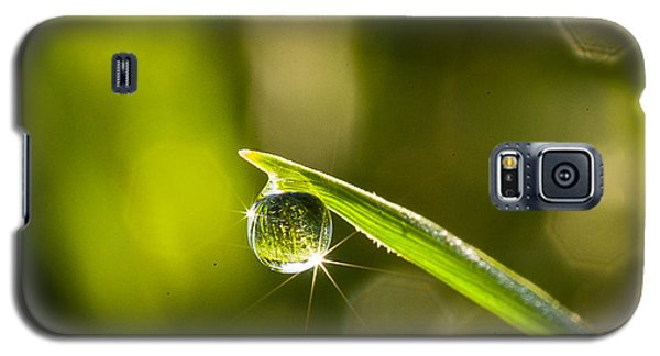 Galaxy S5 Case featuring the photograph Sunrise In A Dewdrop by Monte Stevens