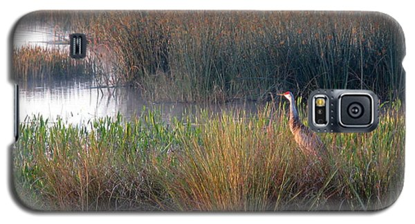 Sunrise On The Wetlands Galaxy S5 Case