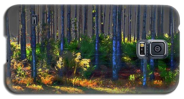 Sunrise On Tree Trunks Galaxy S5 Case