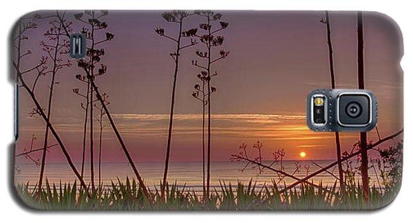 Sunrise Palm Blooms Galaxy S5 Case