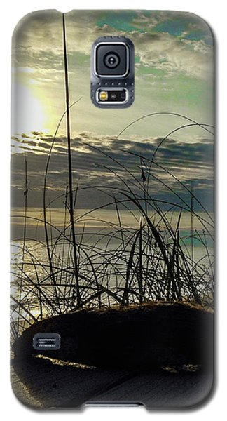 Sunrise Sea Shells Galaxy S5 Case by Josy Cue