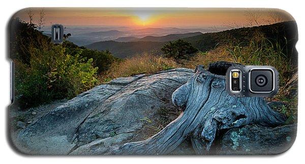 Sunrise Stump Galaxy S5 Case
