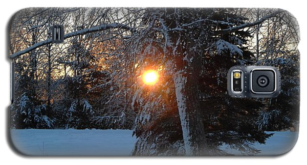 Sunrise Through Branches Galaxy S5 Case