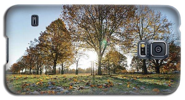 Sunrise Through Lime Trees Galaxy S5 Case