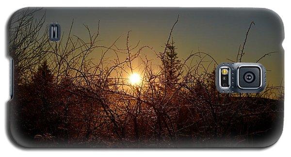 Sunrise Thru The Brush Galaxy S5 Case