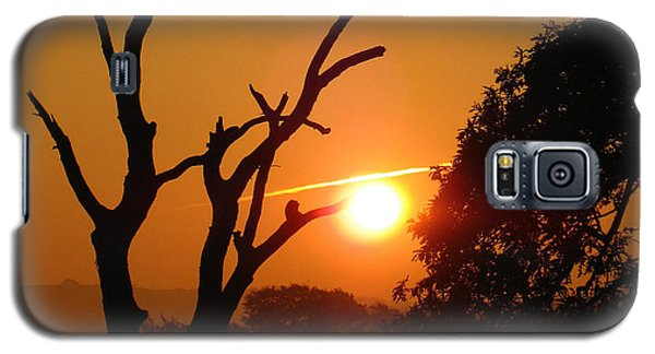 Sunrise Trees Galaxy S5 Case