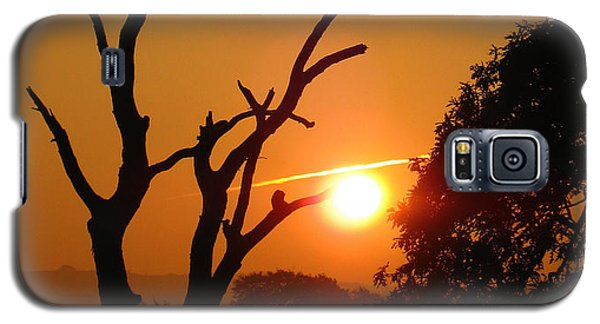Sunrise Trees Galaxy S5 Case
