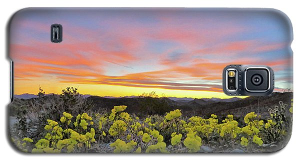 Sunset And Primrose Galaxy S5 Case