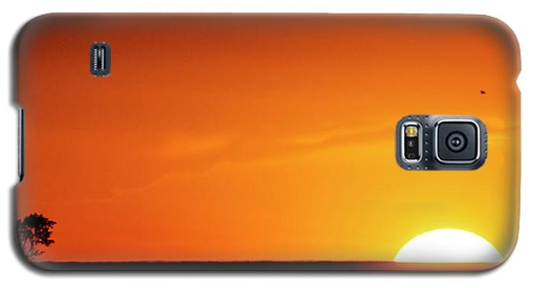 Sunset And Tree -01 Galaxy S5 Case
