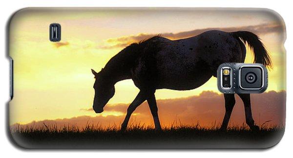 Sunset Appy Galaxy S5 Case