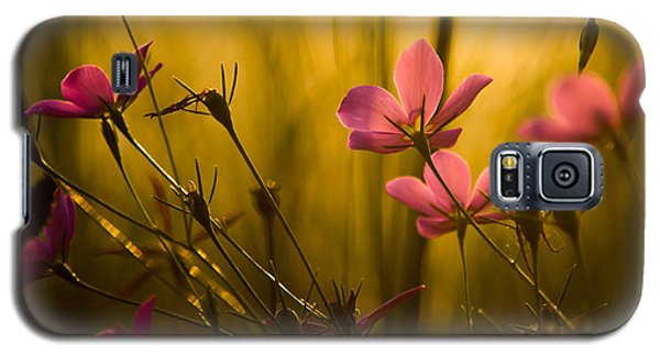 Sunset Beauties Galaxy S5 Case