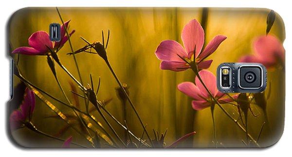 Sunset Beauties Galaxy S5 Case