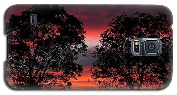 Sunset Behind Two Trees Galaxy S5 Case