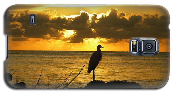 Sunset Bird Galaxy S5 Case