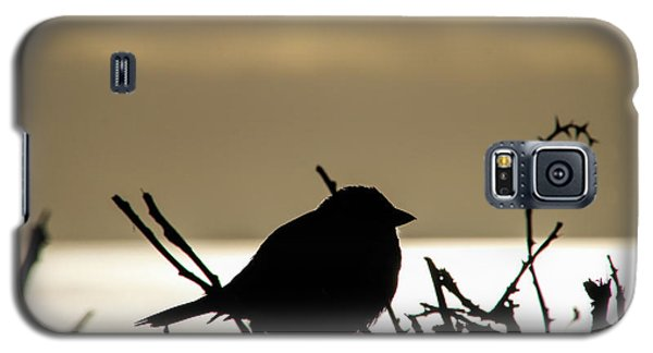 Sunset Bird Silhouette Galaxy S5 Case