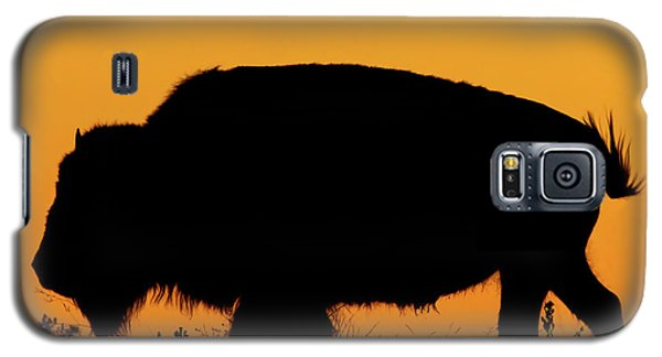 Sunset Bison 2 Galaxy S5 Case