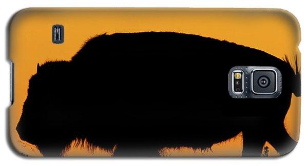 Sunset Bison 2 Galaxy S5 Case