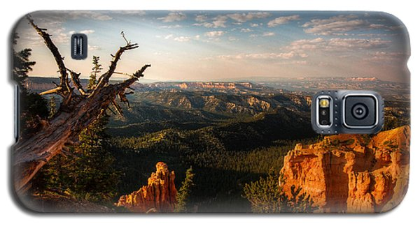 Sunset Bryce Galaxy S5 Case by Rebecca Hiatt