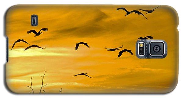 Sunset Fliers Galaxy S5 Case