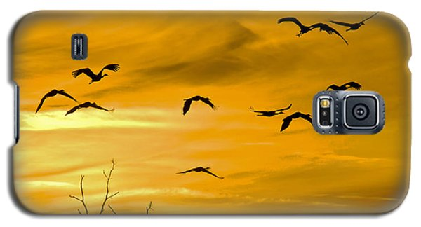 Sunset Fliers Galaxy S5 Case