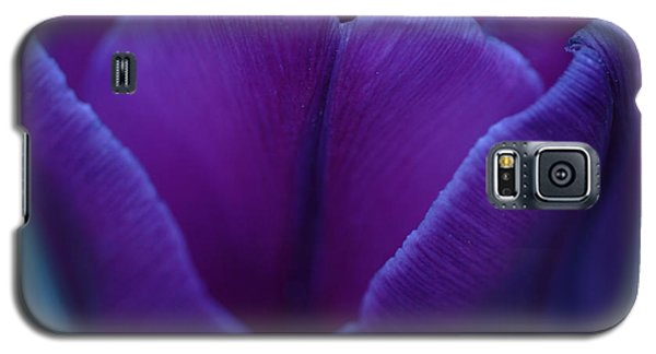 Sunset Flower Galaxy S5 Case