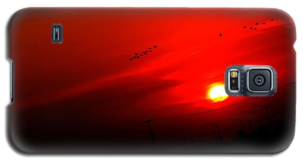 Sunset Geese Leaving Disappearing City - 0814  Galaxy S5 Case by Michael Bessler