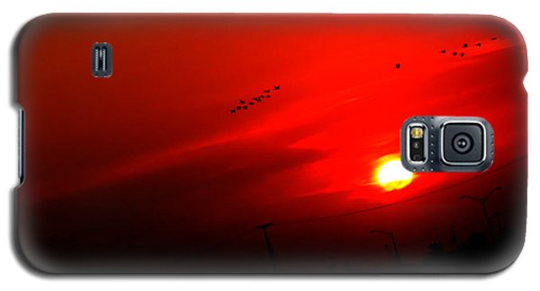 Sunset Geese Leaving Disappearing City - 0814  Galaxy S5 Case