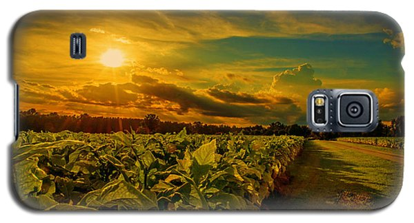 Galaxy S5 Case featuring the photograph Sunset In A North Carolina Tobacco Field  by John Harding